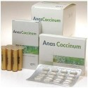 ANASCOCCINUM H17 30 FIALE GL